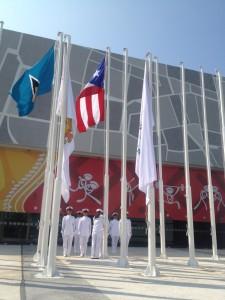 Bandera en alto